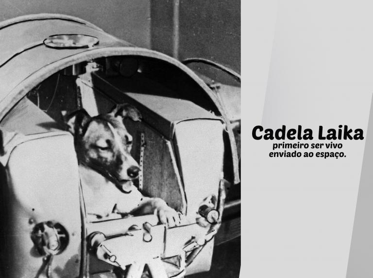 Homenagem a cadela Laika, uma heroína involuntária